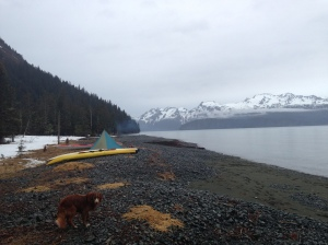 Paddling in Resurrection Bay is nice, but I prefer a state of perpetual drought.